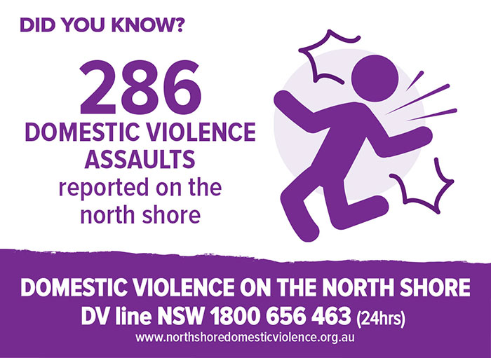 DV-NorthShore-Infographic-Micrographic-286assaults-web