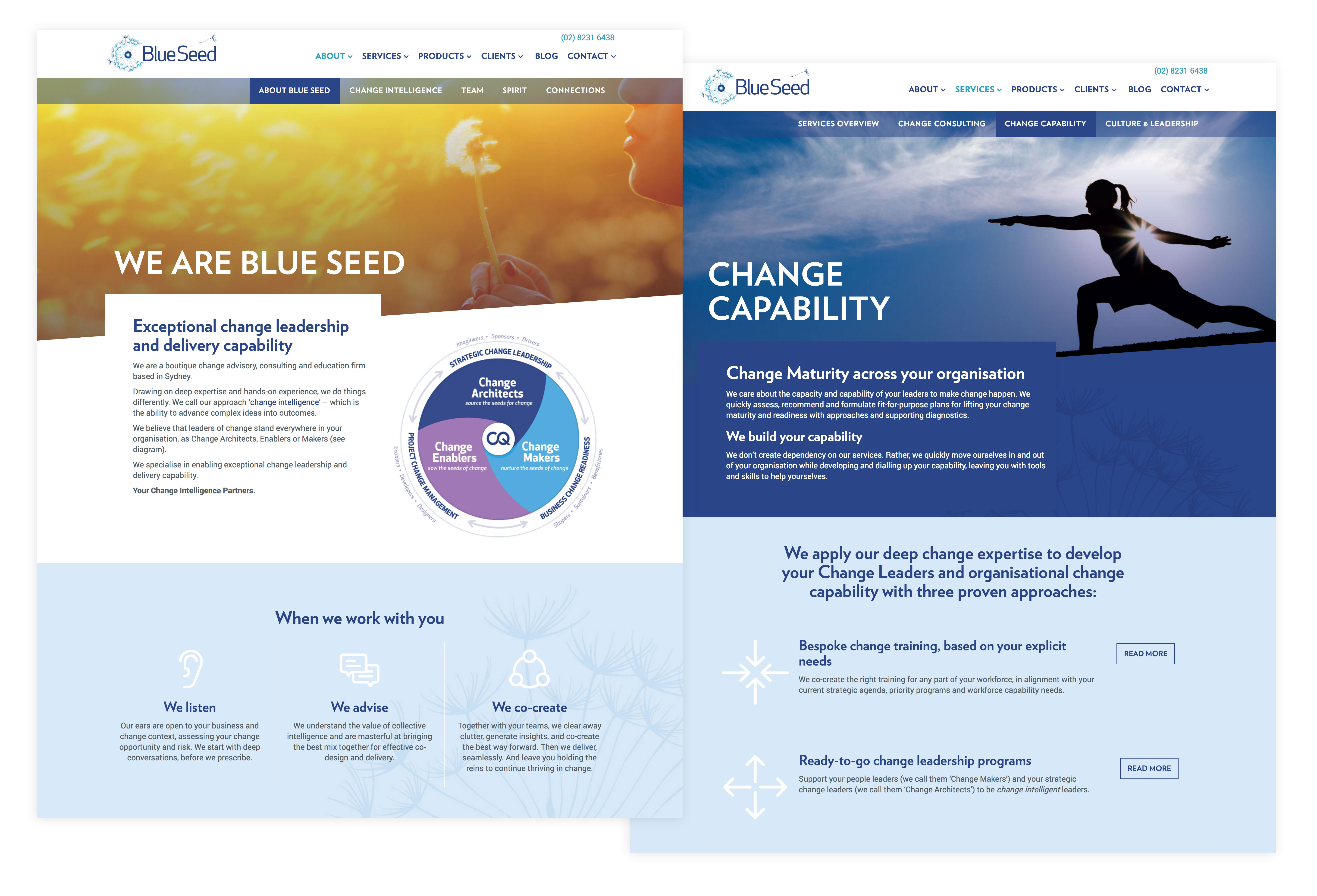 blueseedconsulting-2screens