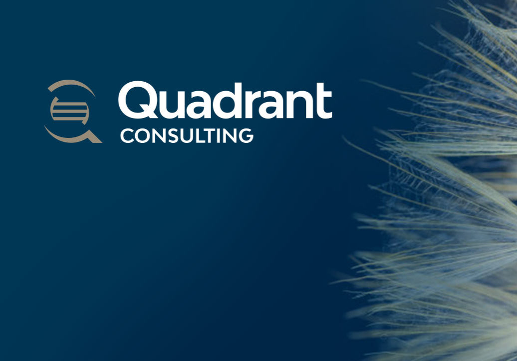 QuadrantConsulting-featuredimage-2